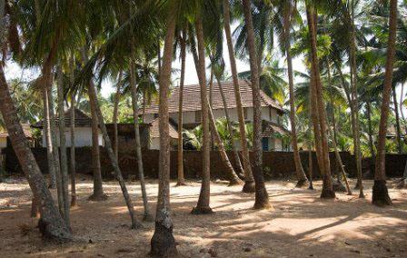 Cochin-11-jpg_085952